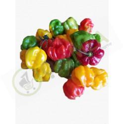 Frozen Pepper (200g)  Buy...