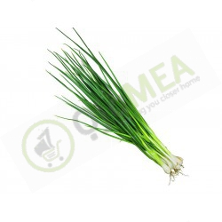 Spring Onions (Portion)