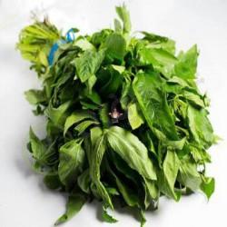 Ewedu Fresh leaf (bundle)