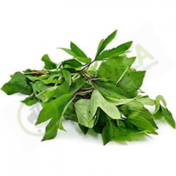 Yakuwa Fresh leaf bundle
