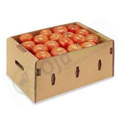 Fresh Tomatoes (1 Box)
