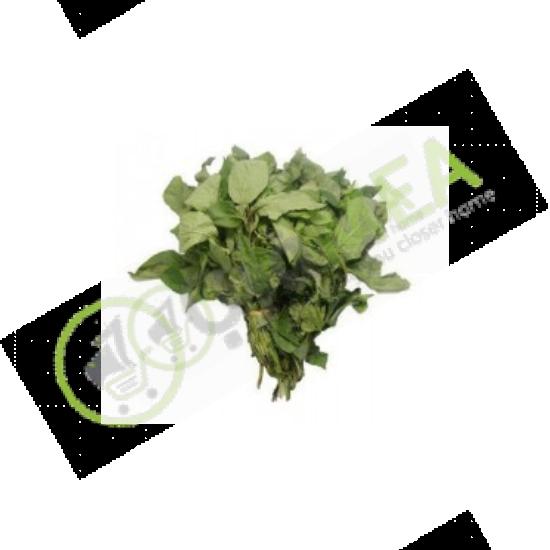 Fresh Scent Leaf (Bundle)
