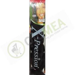 Xpression Ultra Braids 33
